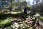 מבחן אופניים Trek Fuel EX 9.8. האם אלו האופניים הטוביםם ביותר שרכבנו עליהם? ייתכן מאד. המחיר אבל...אאוץ'. צילום: תומר פדר