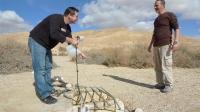 מסלול שטח במערב מכתש רמון. דניאל זך (משמאל) מגלה מים במדבר צילום פז בר