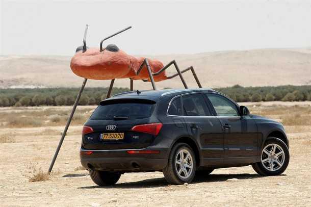 אודי Q5 במבחן שטח ליד ג'וק - אולי נמלה - צילום פז בר
