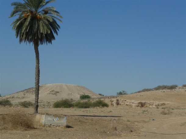 מסלול טיול שטח. למרגלות תל קשת ההיסטורי נפגוש את שביל ישראל - נסע בשטח לאורכו צילום: פז בר