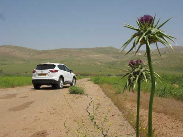 מבחן דרכים מאזדה CX5. כל קוץ בבקעה - פרח. כיפית ומתגמלת לנהיגה. פחות מרשימה בנוחות או צריכת דלק. צילום: רוני נאק