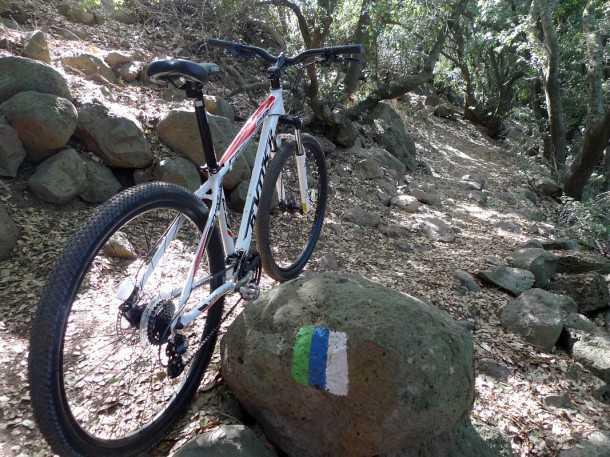 מבחן לאופני הרים EVOKE RACE 29. מנוחה על שביל הגולן. בקטע הסינגל הקצר של יער אודם. האופניים התקשו לתמרן בין העצים והבלמים חסרו נשיכה. צילום: רוני נאק