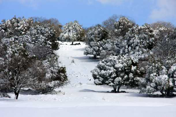 4X4 בשלג. לא רואים את השבילים המסומנים ולא רואים את שדות המוקשים! תכננו היטב את ציר המסע ותמיד עם כוחות ואביזרי חילוץ. צילום: רמי גלבוע
