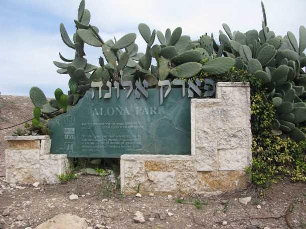 טיול שטח עם יונדאי IX35. תחילת המסלול בפארק אלונה ו-מי קדם. הזדמנות להכניס את הילדים מתחת לאדמה. צילום: רוני נאק