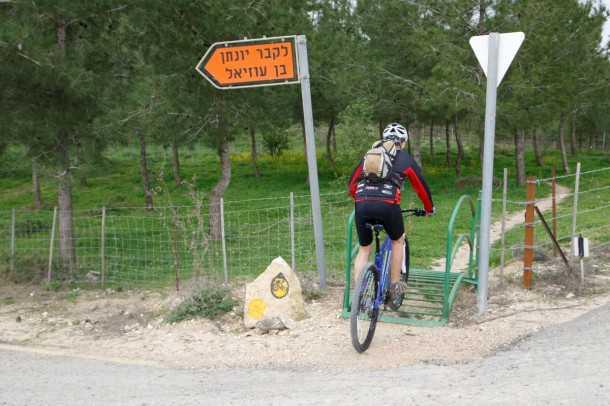 טיול אופניים סינגל יער ביריה. שביל מוקפד ומהנה מאד בין עצי היער. 11 קילומטרים של ירידות בין עצים ובנוף אירופאי. צילום: פז בר