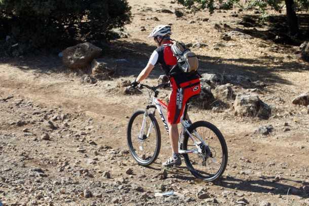 טיול אופניים רמת הגולן - מתחילים ברכיבה ביער אודם עם טיפוס לראש ההר דרך יער האלונים הקסום. צילום: פז בר