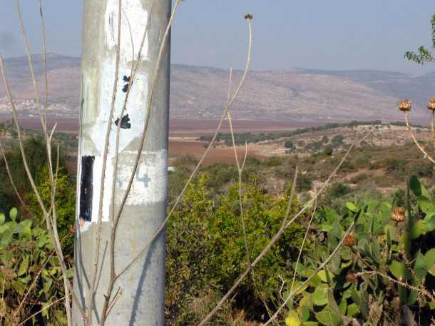מסלול שטח, טיול מעצי הזית העתיקים בישראל לרוח של אבטליון. הירידה מקבר רבי יהודה הנשיא למצפה סנדו. צילום: רוני נאק