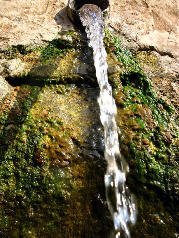 מסלול טיול שטח מציפורי לאבטליון בעקבות הזיתים העתיקים. עין נטופה נובע כל השנה לפעמים הבריכה מלאה. צילום: רוני נאק