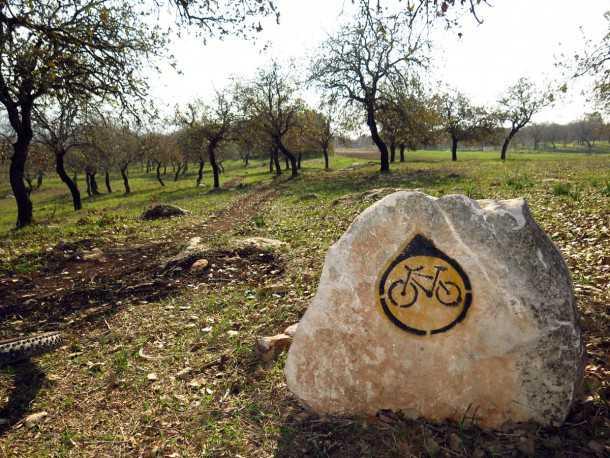 """טיול אופניים עם יונדאי IX35. סינגל אלון הגליל הוא מהוותיקים בשבילי האופניים בישראל ונפרץ בזכות יוזמה מקומית ועזרה של קק""""ל. מקסים ויפה מתמיד. צילום: רוני נאק"""