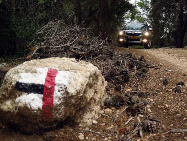 מבחן רכב סקודה YETI. רכב הפנאי הקטן מסקודה מגיע סופסוף לבשלות אחרי מתיחת הפנים. המפלצת החביבה מוכה לצאת מהיער? צילום: רוני נאק
