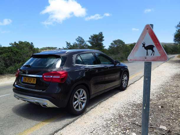 מבחן רכב מרצדס GLA. מתגמל בכביש מפותל, דורש אסרטיביות על המצערת. זהירות צבי! צילום: רוני נאק
