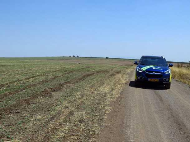 טיול שטח עם יונדאי לרמת יששכר. רמה בזלתית עם עדרי צבאים גדולים ומרחבים נדירים. צילום: רוני נאק