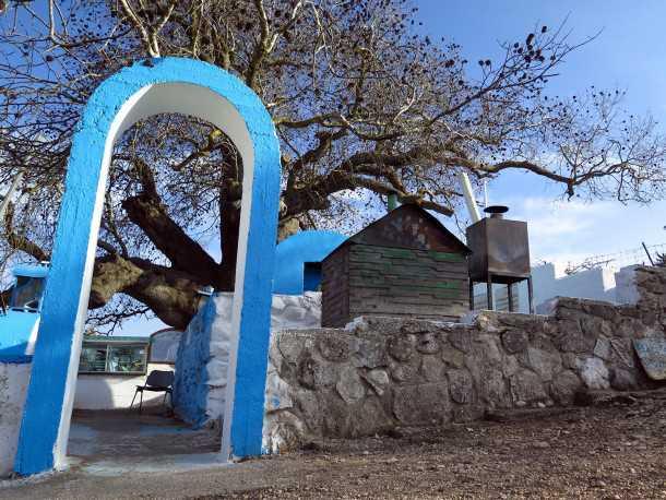 טיול שטח עם HYUNDAI IX35. הקבר של רבי טרפון ועץ האלון המהדהים שצמוד אליו. שניהם שווים חיבוק חזק. צילום: רוני נאק