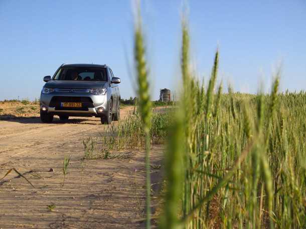 """טיול שטח מחולות עגור לפארק אשכול. שדות הנגב ירוקים עכשיו לאורך השפד""""ן. צילום: רוני נאק"""