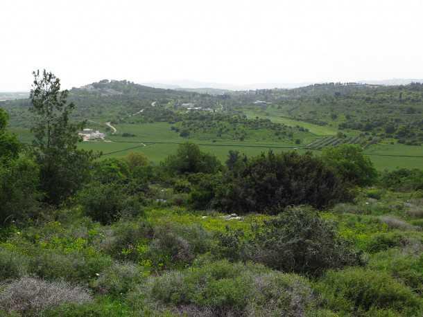טיול שטח לרשת השבילים של אלון הגליל עם מיצובישי אאוטלנדר. צילום: רוני נאק