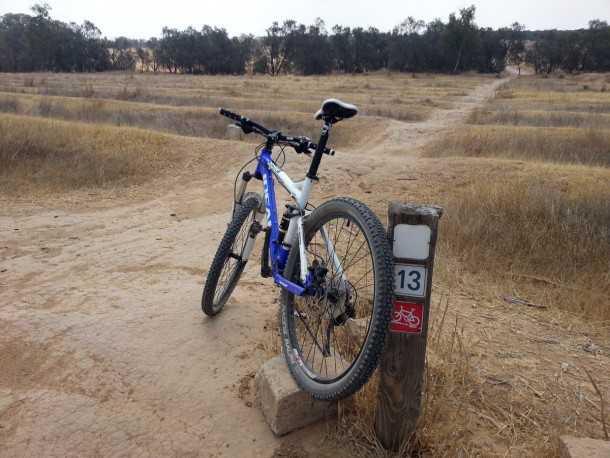 """סינגל בארי - הזקן והטוב - גם הוא בתוך האתר של מסלולי האופניים של קק""""ל. צילום: רוני נאק"""