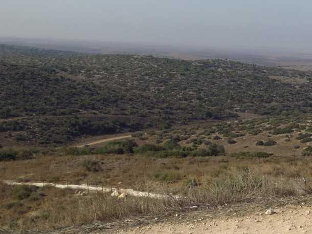 טיול שטח משדה משדה לאמציה דרך גבעת גד. מבט לדרום מערב - ביום בהיר מי שממש חייב יוכל לראות את עזה. צילום: רוני נאק