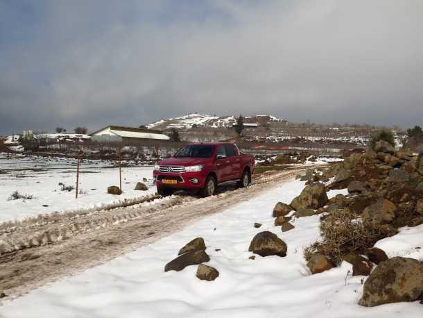 עם טויוטה היילקס לשלג של רמת הגולן. מפגש בין חזיר בר לבין טויטה היילקס איך הסתיים? צילום: רוני נאק