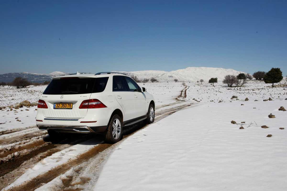 לאן לנסוע כדי לראות שלג? הנה שלושת המקומות המומלצים של שטח. בצילום הזה יער אודם. צילום: פז בר