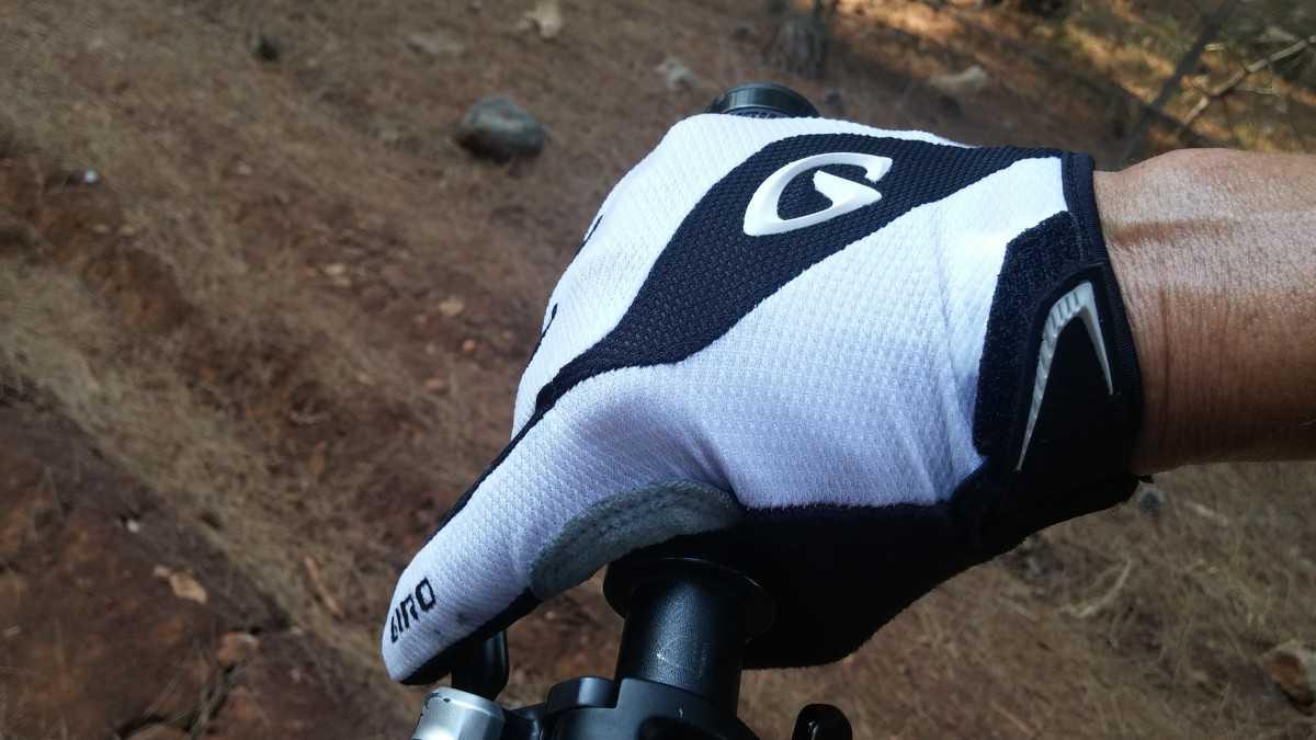 כפפות אופניים GIRO BRAVO LF. רק 162 שקלים לחברי מועדון רוזן ומינץ. צילום: רוני נאק