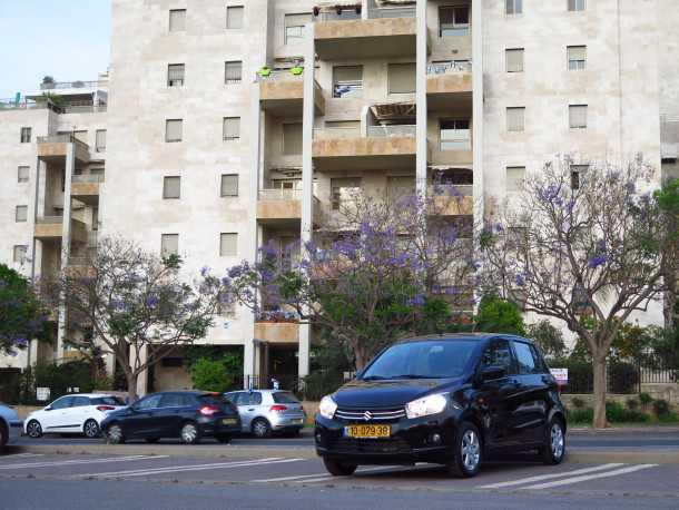 מבחן רכב סוזוקי סלריו. קטנה ועירונית, לא מתנצלת וחסכונית (הזכרתי את המזגן המעולה?) צילום:רוני נאק