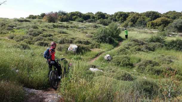 טיול אופניים סינגל זכריה. מסלול לא קשה או טכני מדי ומאד מהנה לביצוע מוקדם בבוקר. צילום: רוני נאק