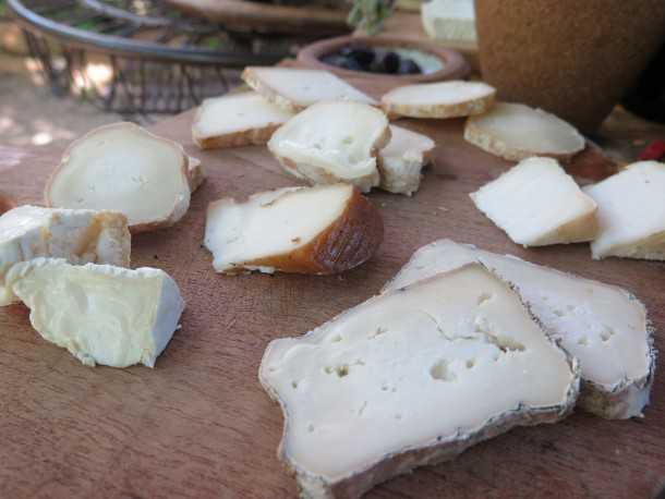 """הגבינות המדהימות של """"חלב עם הרוח"""" על הר עצמון - ראויות לעליה לרגל! צילום: רוני נאק"""