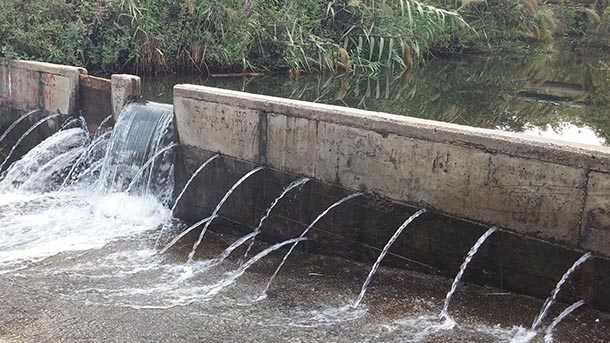 חם מזיעים, קיץ, אין כמו טבילה צוננת במי נחל צלולים עשירים בדגים וזורמים איתן בכל השנה. איפה זה? צילום: רוני נאק