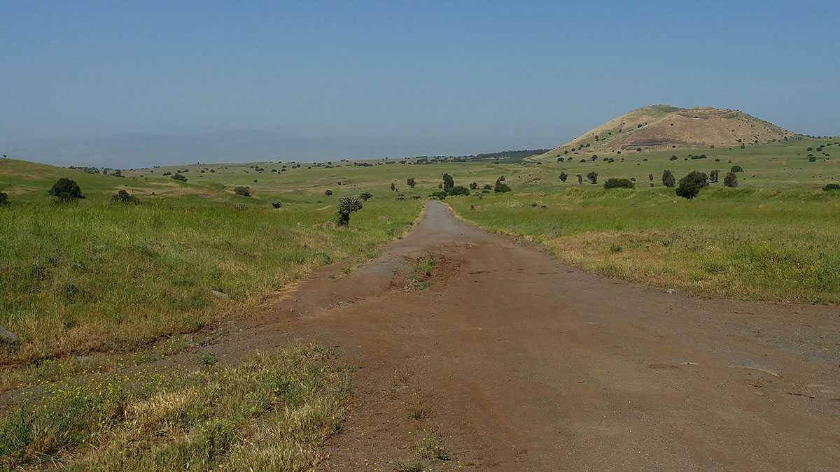 מסלול טיול בשטח - מדלגים בין הרי הגעש של מזרח רמת הגולן. צילום: רוני נאק