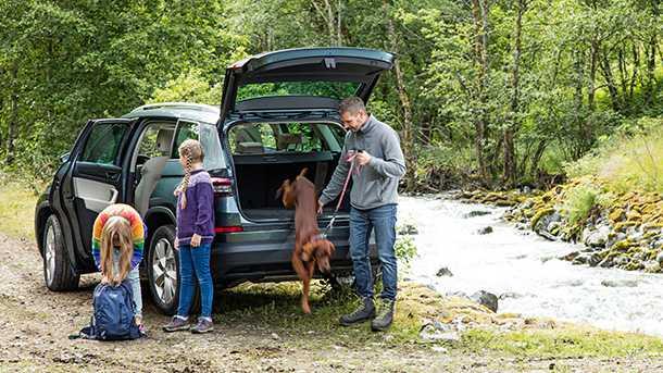 מבחן דרכים סקודה קודיאק. צילום אווירה משפחתי כזה עם כלב, נחל ויער - סיפור של האחים גרים עם סוף שמח. צילום: סקודה