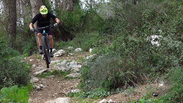 """מבחן אופניים BOLD לינקאין 29 - קרבון, בולם נסתר ומחיר כמו בחו""""ל - האם זה עובד? צילום: רוני נאק"""