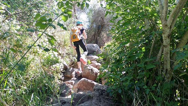 למפלי המים של נחל אל על. מסלול טיול מומלץ ליום קיץ חם. צילום: רוני נאק